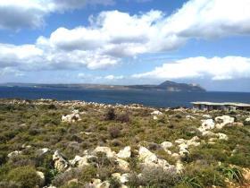 Image No.0-Terre à vendre à Apokoronas