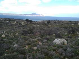 Image No.6-Terre à vendre à Apokoronas