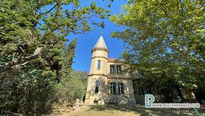 Chateau-for-sale-Narbonne-NAR435-1