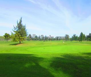 Oliva-Nova-Golf--2-