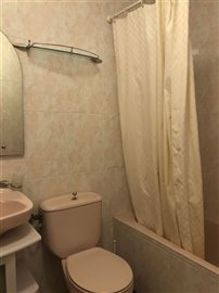 downstairs-bathroom-1