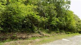 Image No.0-Terre à vendre à Marigot Bay