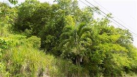 Image No.2-Terre à vendre à Marigot Bay