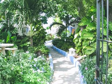 Tropical-Escape-Hotel-and-Blue-Monkey9-22-AM