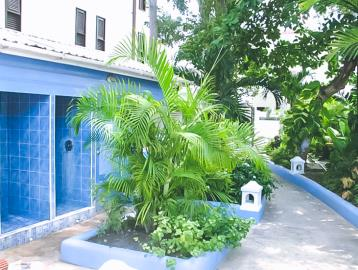 Tropical-Escape-Hotel-and-Blue-Monkey9-43-AM