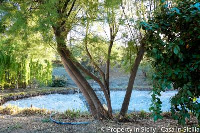 Property-to-sell-in-sicily-villa-delle-melie-collesano-27