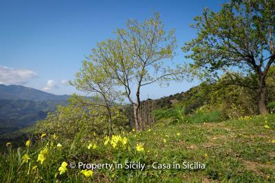 Villa-frassino-pollina-sicily-property-to-buy-59