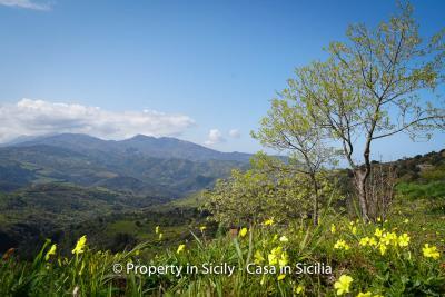 Villa-frassino-pollina-sicily-property-to-buy-58
