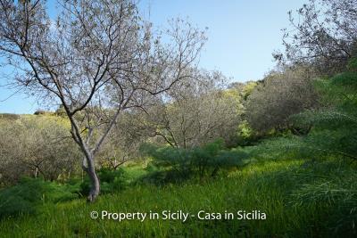 Villa-frassino-pollina-sicily-property-to-buy-39