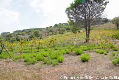 Villa-Isabelle-sicily-villa-turn-key-renovated-cefalu-seaview-31