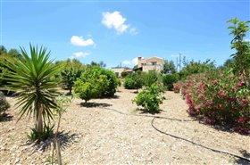 Image No.24-Villa de 3 chambres à vendre à Polemi
