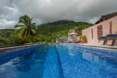 18-Salt-Water-Lap-Pool-with-Shallow-Steps--1402