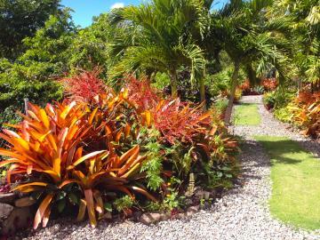 Palm-terrace---Exterior-5