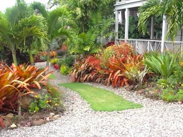 Palm-Terrace---Garden-4