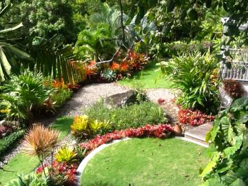 Palm-Terrace--Garden-2