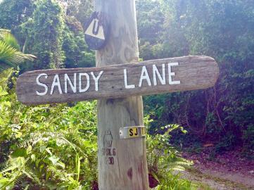 Sandy-Lane---6