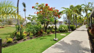 Royal-St-Kitts-Studio---2