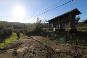 Image No.8-Ferme à vendre à Castelo de Paiva