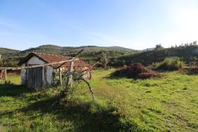 Image No.17-Ferme à vendre à Castelo de Paiva