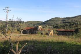 Image No.22-Ferme à vendre à Castelo de Paiva