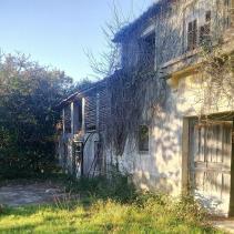 Image No.43-Ferme de 4 chambres à vendre à Oliveira de Azeméis