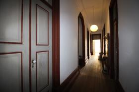 Image No.33-Ferme de 4 chambres à vendre à Oliveira de Azeméis