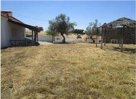 Image No.1-Terre à vendre à Elvas