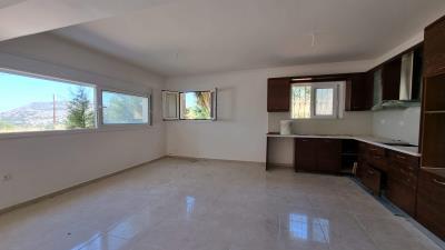 Lower-level-Kitchen-1