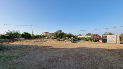 Front-garden-1