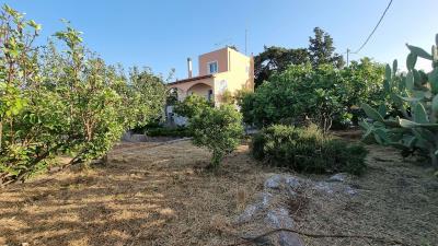 Front-garden-3