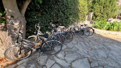 Bicycle-for-guest