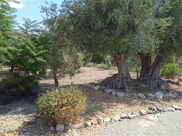 736-country-house-for-sale-in-oria-62147-larg