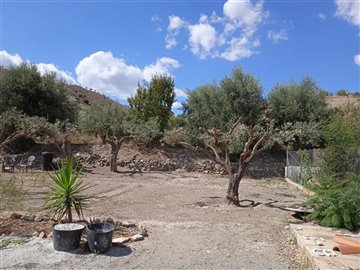 736-country-house-for-sale-in-oria-62149-larg