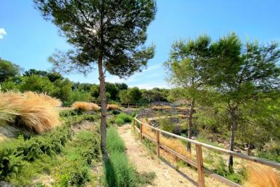 las-colinas-golf-and-country-club---nature-trail---las-colinas-property-for-sale